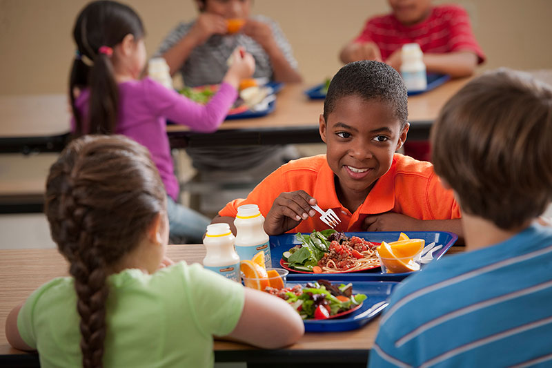 "ICYMI: USDA Extends Free Meals for All Kids. Check out the full press release, <a href=""https://www.snapedny.org/usda-extends-free-meals-for-all-kids/""> click here!</a></p>"