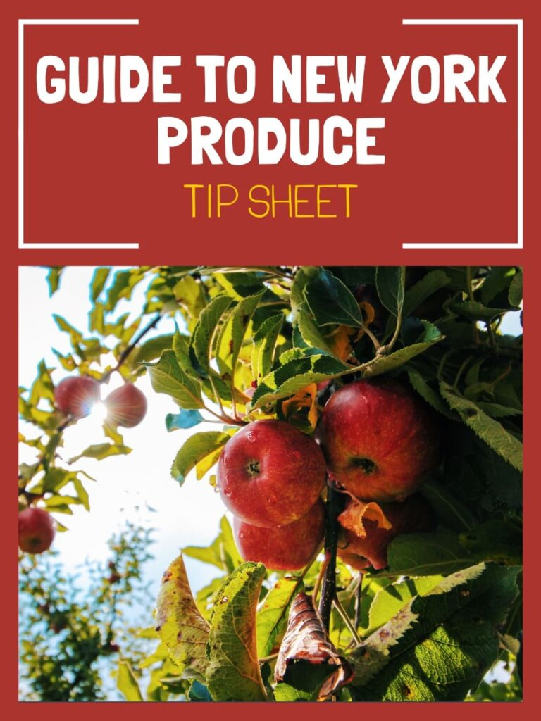 guide to new york produce